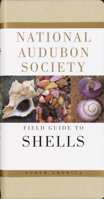 National Audubon Society Field Guide to North American Seashells By Rehder, Harald A.